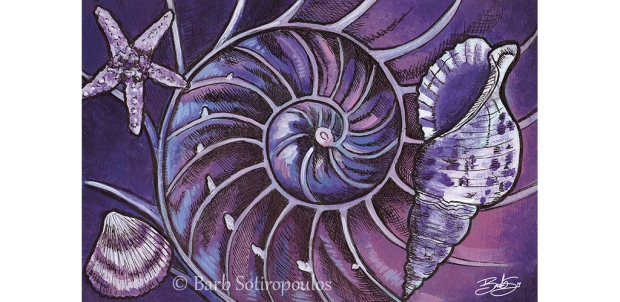 Inside the Nautilus_Barb Sotiropoulos