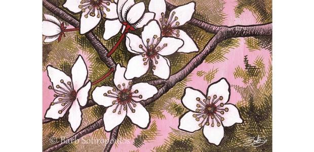 Spring Sakura_Barb Sotiropoulos