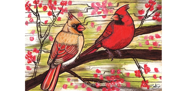 Young Cardinals_Barb Sotiropoulos