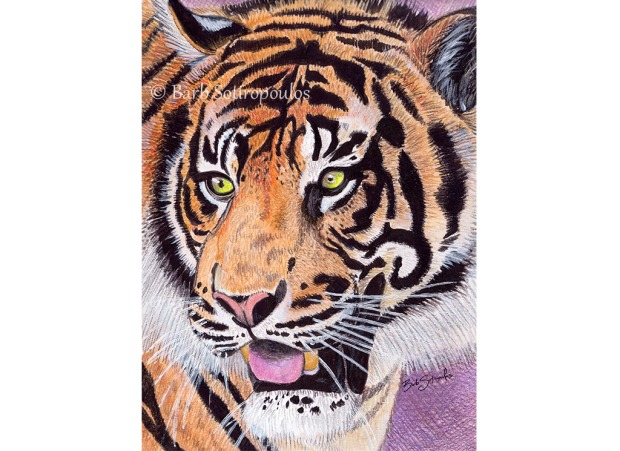 Le Tigre_Barb Sotiropoulos