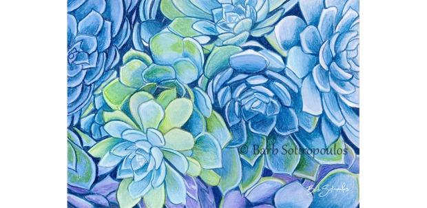Succulents_Barb Sotiropoulos