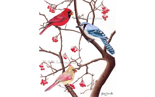 BirdsofaFeather_Barb Sotiropoulos