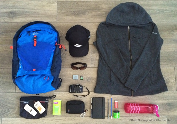 Items to bring to a zoo day trip