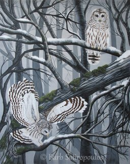 """""""Barred Owls""""48×60 in, Acrylic on Canvas2014. All images copyright Barb Sotiropoulos. All Rights Reserved. (Private Collection)"""
