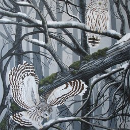 """Barred Owls"" 48×60 in, Acrylic on Canvas 2014. All images copyright Barb Sotiropoulos. All Rights Reserved. (Private Collection)"