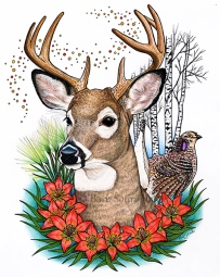 """""""From Many Peoples Strength"""" 11×14 in Colored Pencil, Ink and PITT Pens on Hot Press Watercolor Paper 2017. All images copyright Barb Sotiropoulos. All Rights Reserved. This illustration is 4 of 14 in the Canada 150 series. It is inspired by the provincial symbols of the Province of Saskatchewan and includes the White Tailed Deer, Sharp Tailed Grouse, Western Red Lily, Paper Birch Tree, and Needle and Thread Grass."""