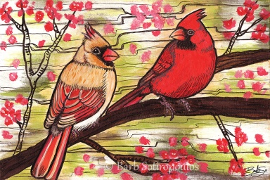 """Young Cardinals"" 6×4 in, Acrylic and ink on Strathmore Mixed Media Paper 2014. All images copyright Barb Sotiropoulos. All Rights Reserved. (Prints Available)"