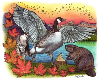 """From Sea to Sea"" 14×11 in Colored Pencil, Inktense and PITT Pens on Hot Press Watercolor Paper 2018. All images copyright Barb Sotiropoulos. All Rights Reserved. This illustration is 14 of 14 in the Canada 150 series. It is inspired by the territorial symbols of Canada and includes the Canada Goose, North American Beaver, Grey Jay, and Maple Leaf."