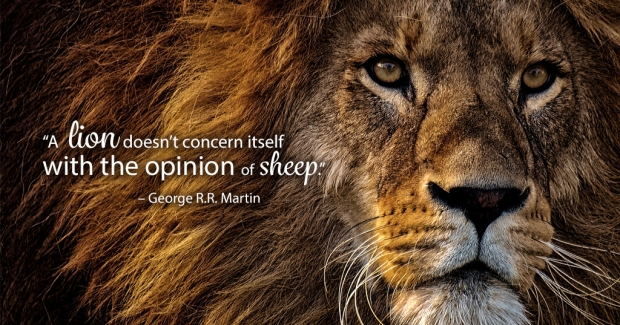 A lion doesn't concern itself with the opinion of sheep - George R.R. Martin