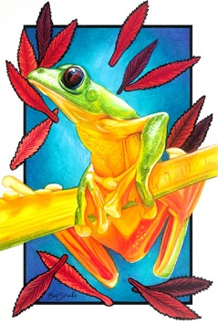 Green frog with red leaves and a blue background